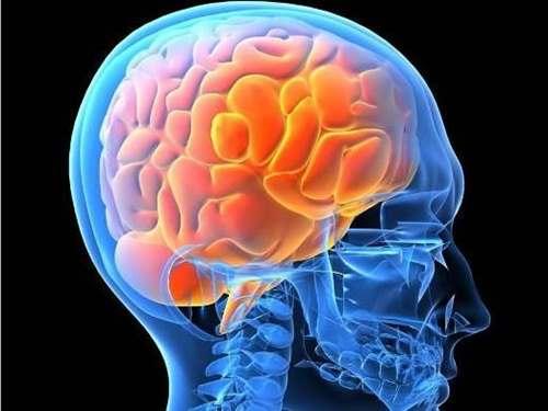 Флуорид и други химикали, свързани с нарушения в развитието на мозъка