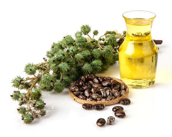 Ако не използвате рициново масло, губите. Ето 7 ползи, за които трябва да знаете