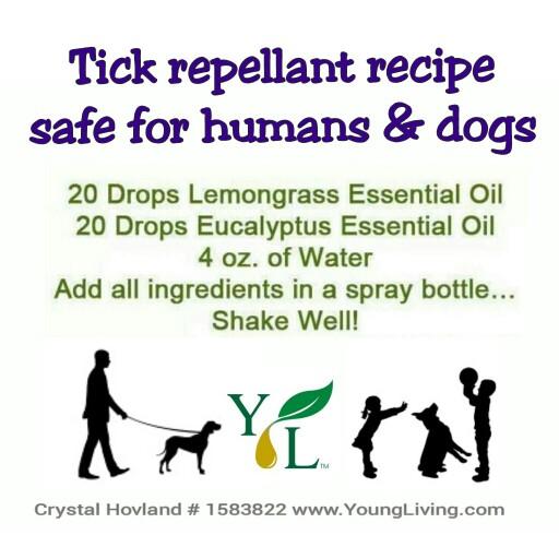 Лесна рецепта за спрей от етерични масла против кърлежи