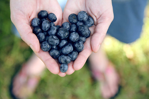 Цианидин: ползи за сърцето, при диабет тип 2 и при артрит – 3