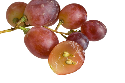 grape-seeds-remedy