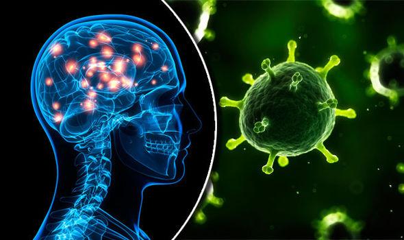 Могат ли вирусоподобни протеини да причиняват Алцхаймер?